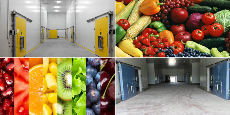 Controlled Atmosphere Cold Storage Solutions